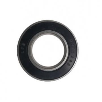 Ceramic Ball Bearing 6205 China Factory