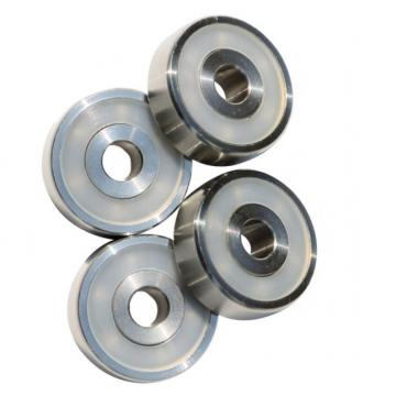 Zwz Bearing 6205 6206 6207 6208 Ceramic Bearing Malaysia