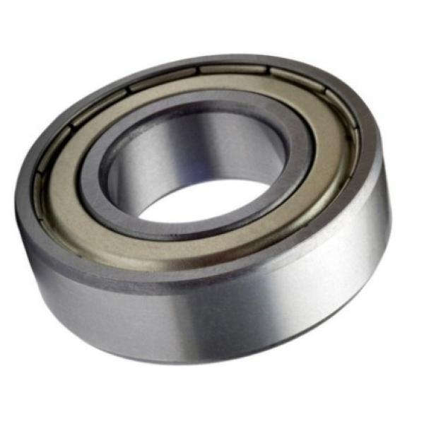 Agricultural Machinery Bottom Price Product Single Row Taper Roller Bearing 30206 30207 30208 32218 Ball Bearing Timken/INA/FAG/SKF #1 image
